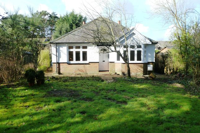 Thumbnail Bungalow to rent in Whinwhistle Road, East Wellow, Romsey