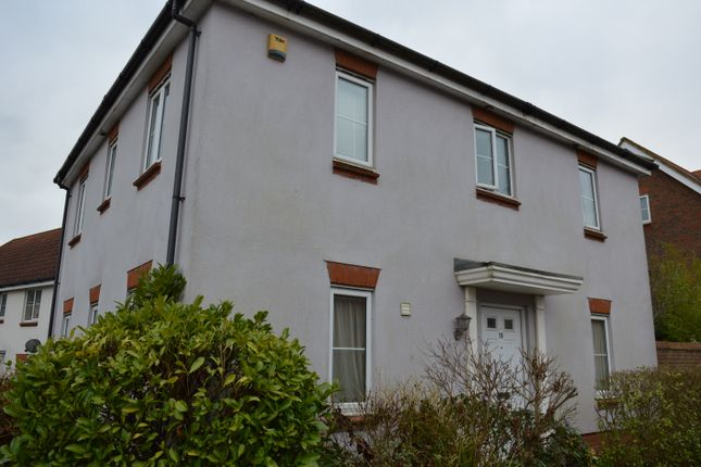 Thumbnail Detached house to rent in Bishy Barnabee Way, Norwich