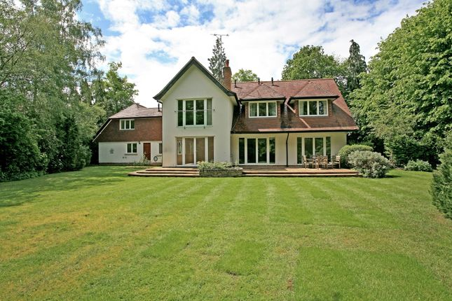 Thumbnail Detached house to rent in Islet Road, Maidenhead