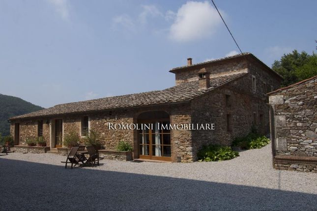 Tuscan Estate With Manor Villa, 10,46 Ha Of Land, Vineyards,Olive Grove For Sale In Italy