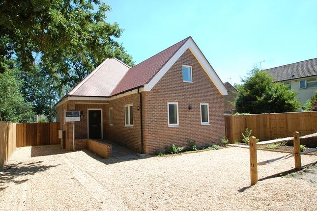 Thumbnail Detached house for sale in Fern Close, Petersfield