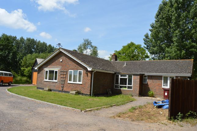 Thumbnail Detached bungalow for sale in Main Road, Nutbourne, Chichester