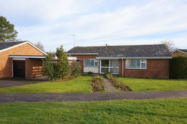 Thumbnail Detached bungalow for sale in Chaplin Road, East Bergholt, Colchester, Suffolk