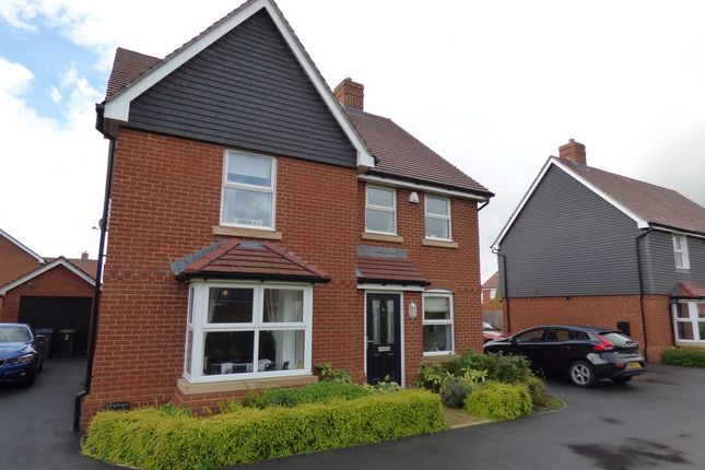 Thumbnail Detached house to rent in Sackville Gardens, Barnham, Bognor Regis