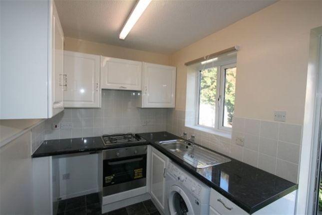 Thumbnail Terraced house to rent in Vivaldi Close, Basingstoke
