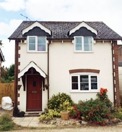 Thumbnail Detached house to rent in Biddlecombe Orchard, Bridport