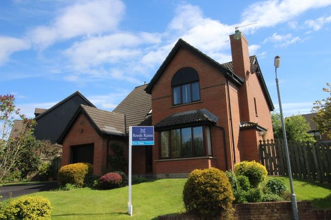 Thumbnail Detached house for sale in Waringfield Drive, Moira