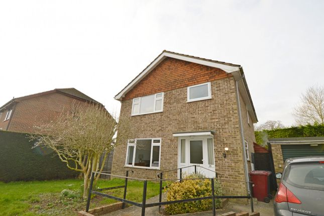 Thumbnail Detached house to rent in The Leys, Fernhurst, Haslemere