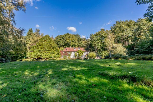 Thumbnail Detached house for sale in Jumps Road, Churt, Farnham