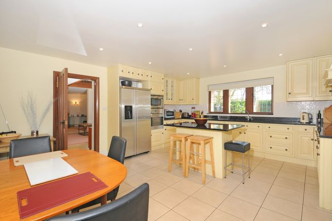 Detached house to rent in Winkfield Road, Ascot