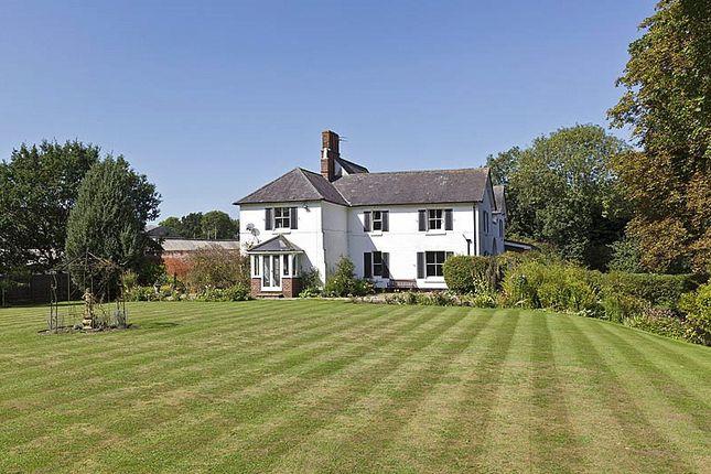 Thumbnail Land for sale in Bucks Green, Bedingfield, Eye, Suffolk