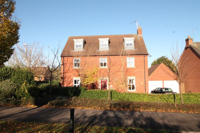 Thumbnail Detached house for sale in Edgehill Drive, Daventry