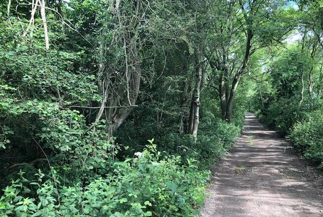 Thumbnail Land for sale in The Woodland Known As Harris Copse, Hill Road, Wouldham
