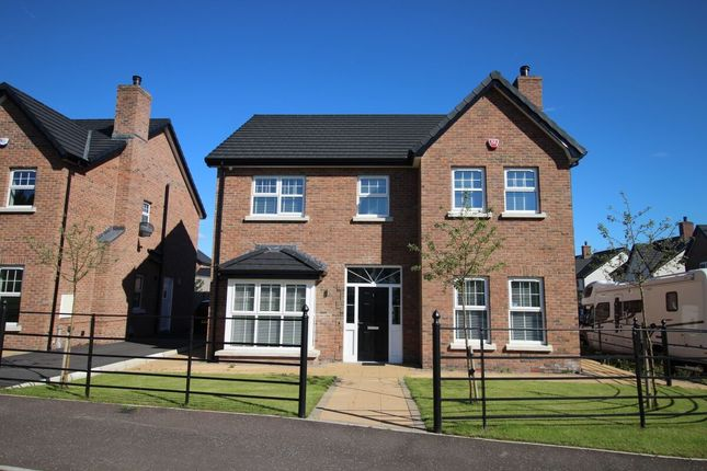 Thumbnail Detached house for sale in Blaris Green, Blaris Road, Lisburn