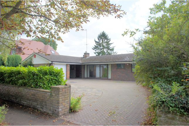 Thumbnail Detached bungalow for sale in Cheapside, Woking