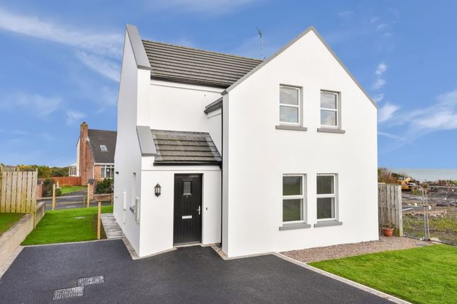 Thumbnail Detached house for sale in Vester Cove, Donaghadee
