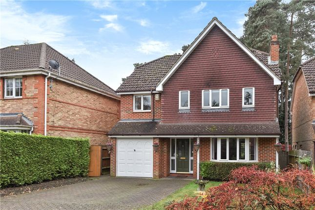 Thumbnail Detached house for sale in Butler Road, Bagshot, Surrey