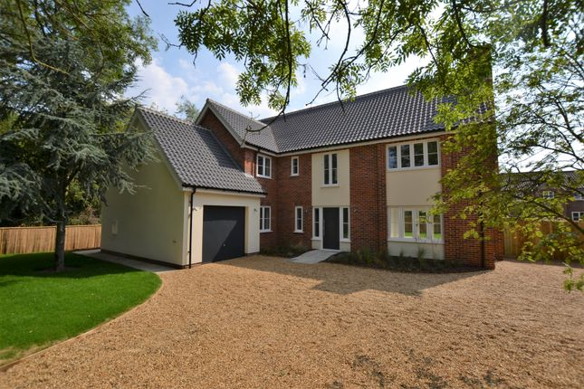 Thumbnail Detached house for sale in Dumpling Green, Dereham
