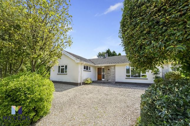 Thumbnail Detached bungalow for sale in East Knighton, Dorchester