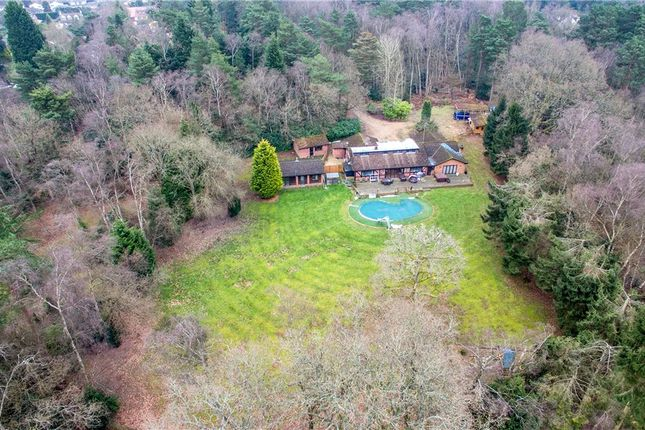 Thumbnail Detached bungalow for sale in Lower Wokingham Road, Crowthorne, Berkshire