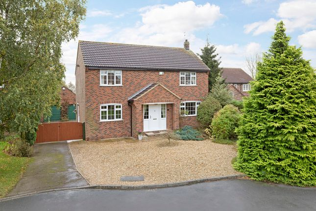 Thumbnail Detached house for sale in Westlands, Bilton-In-Ainsty, York