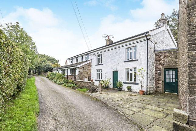 Thumbnail Semi-detached house to rent in Blackburn Road, Higher Wheelton, Chorley