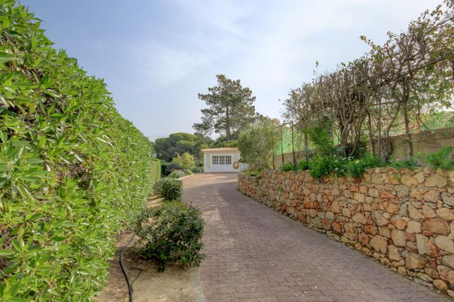 Driveway of Carvoeiro (Lagoa), Algarve, Portugal