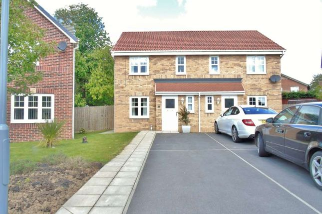 Thumbnail Semi-detached house to rent in Babbage Gardens, Stockton-On-Tees