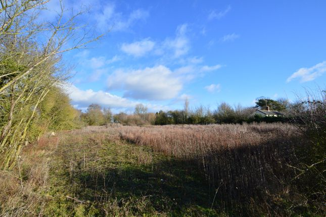 Thumbnail Land for sale in Ridgewell, Halstead, Essex