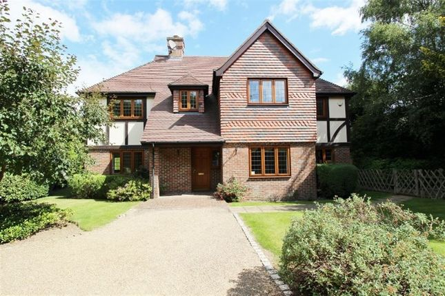 Thumbnail Detached house to rent in Bramble Lane, Sevenoaks