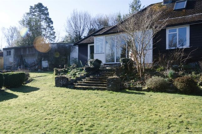 Thumbnail Detached bungalow for sale in Coggins Mill Lane, Mayfield, East Sussex