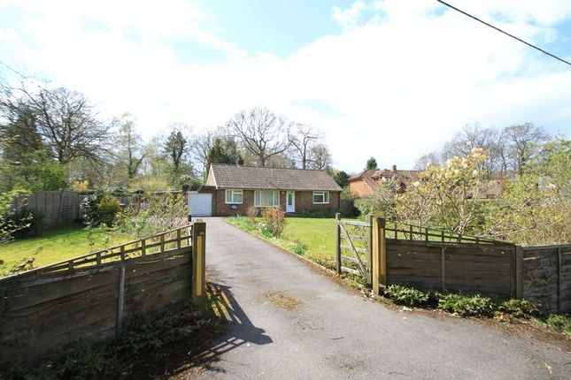 2 bed detached bungalow for sale in The Drive, Ifold, Loxwood, Billingshurst