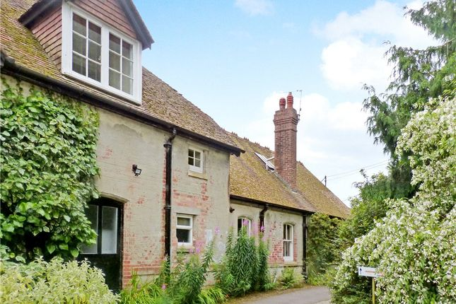 Thumbnail Semi-detached house to rent in Shillingstone House, Shillingstone, Blandford Forum, Dorset