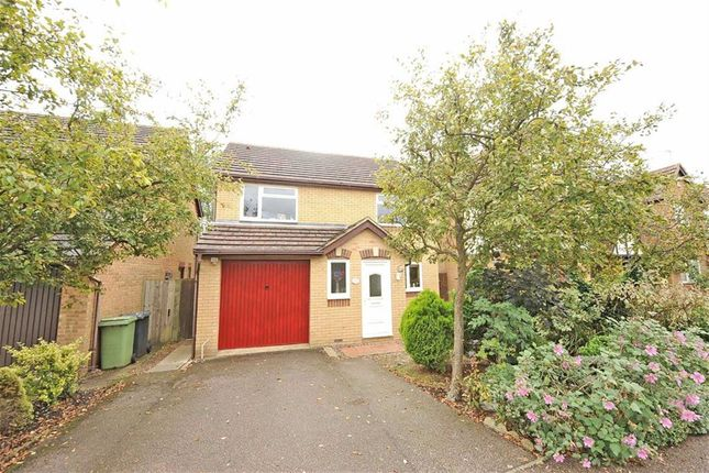 Thumbnail Detached house for sale in Hatfield Close, Wellingborough