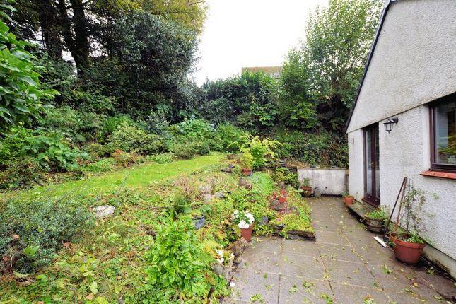 Garden of Cole Moore Meadow, Tavistock PL19
