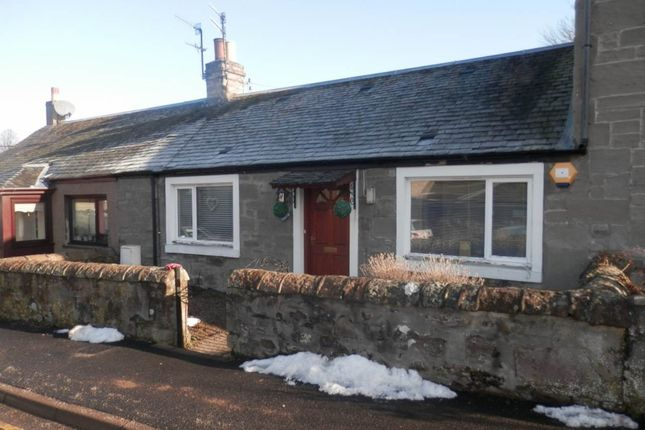 Thumbnail Detached house to rent in Albert Road, Scone, Perth