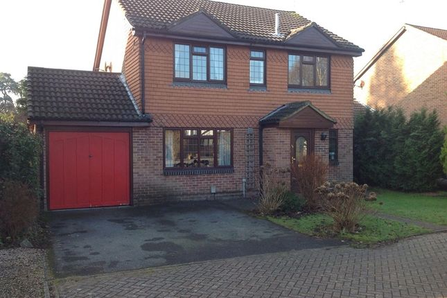 Thumbnail Detached house for sale in Badgers Copse, Camberley, Surrey