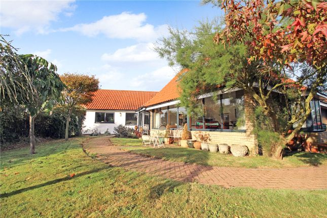 Thumbnail Detached bungalow for sale in Wangford Road, Reydon, Southwold