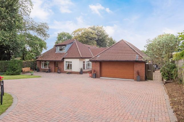 Thumbnail Detached house for sale in Weston Road, Failand, Bristol