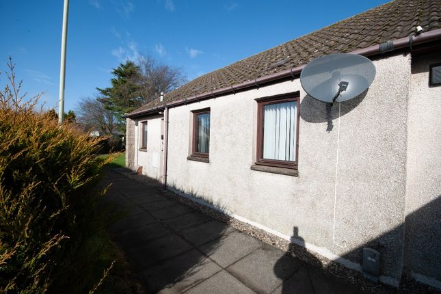 2 bed bungalow to rent in Mclellan Court, Friockheim, Angus DD11