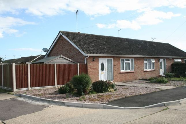 Thumbnail Bungalow to rent in Whitegate Road, Brightlingsea, Colchester