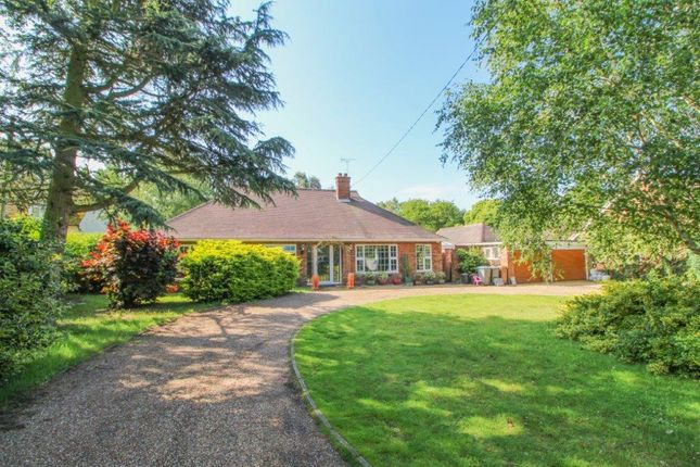 Thumbnail Detached bungalow for sale in Playford Road, Little Bealings, Woodbridge