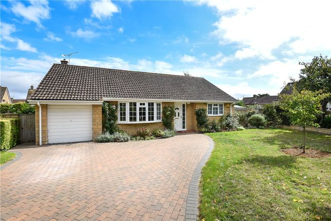 Thumbnail Detached bungalow for sale in The Sheeplands, Sherborne