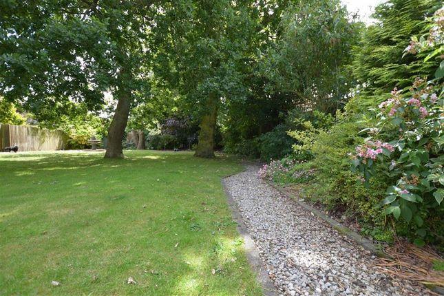 Rear Garden of Cheyne Walk, Hornsea, East Yorkshire HU18
