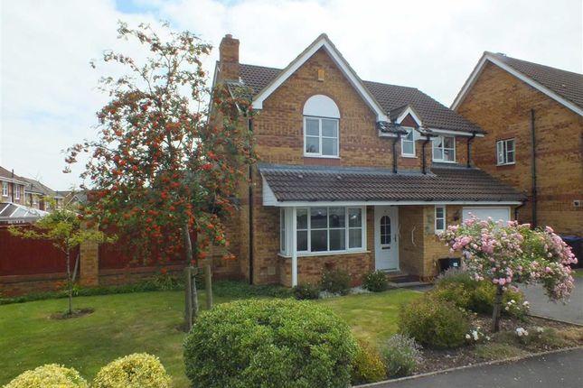 Thumbnail Detached house to rent in Hewitt Close, Trowbridge, Wiltshire