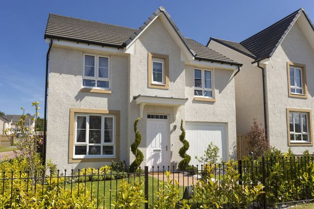 "Thumbnail Detached house for sale in ""Fernie"" at Kildean Road, Stirling"