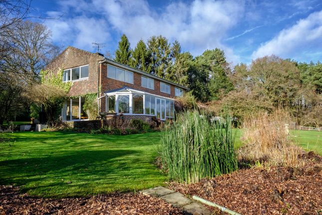 Thumbnail Detached house for sale in Minsted, Midhurst, West Sussex
