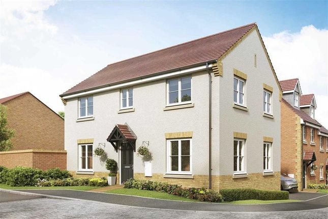 Thumbnail Detached house for sale in Weir Hill, Preston Street