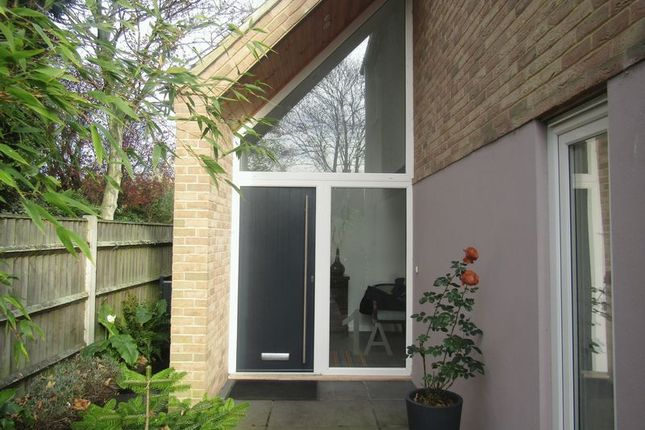 Thumbnail Detached house for sale in Poplar Avenue, Gorleston, Great Yarmouth
