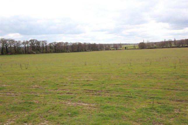 Thumbnail Land for sale in A285, A286, A287, A288 Long Reach, Ockham, Woking